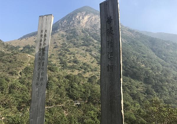 hong kong4 (1)