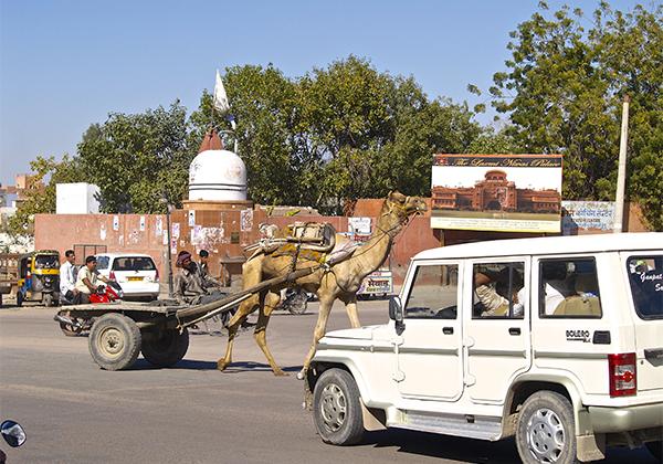 un monde de voyages Inde