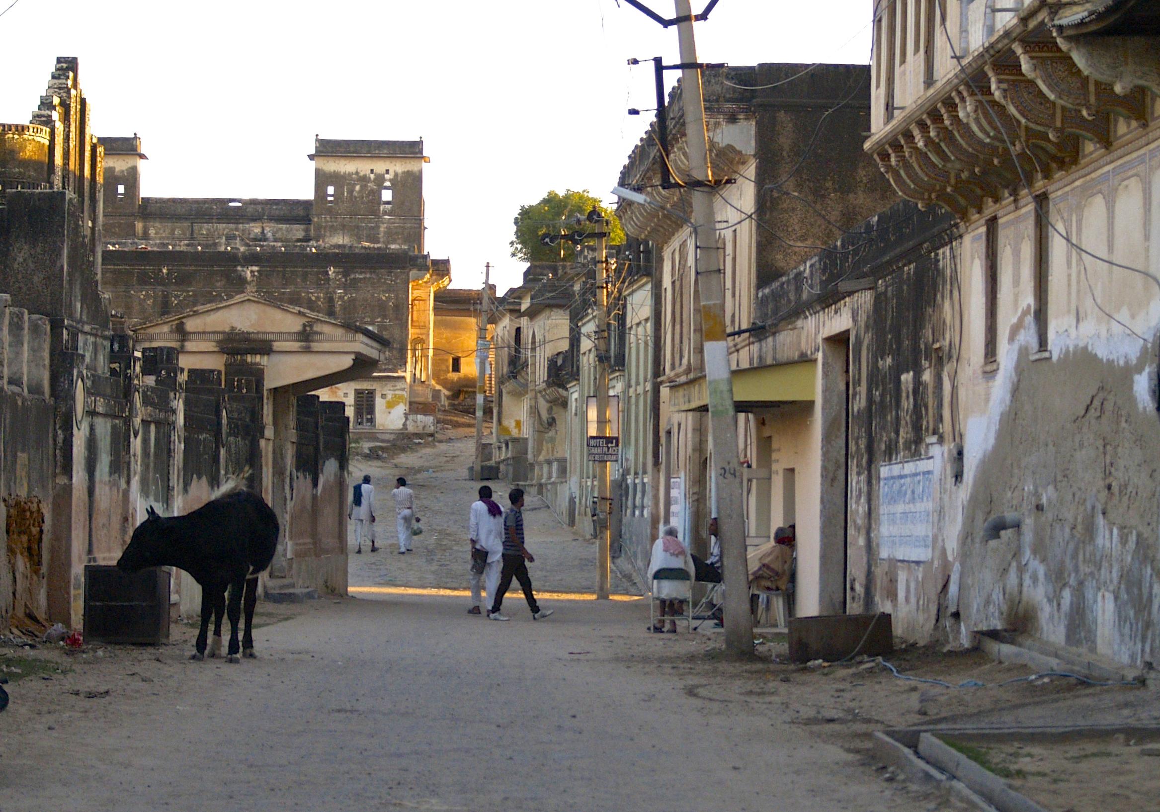 un monde de voyages Inde Bikaner