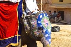 un monde de voyages Inde Jaipur - Fort d'Amber - éléphant