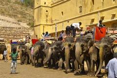 un monde de voyages Inde Jaipur - Fort d'Amber