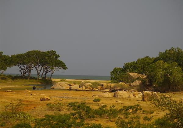 Sri_Lanka_020
