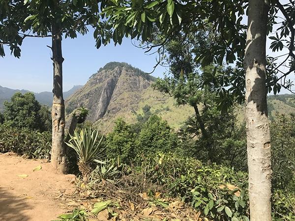 Sri_Lanka_165