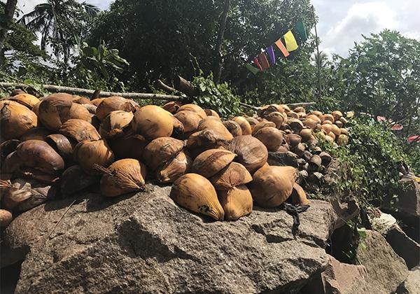 Sri_Lanka_219