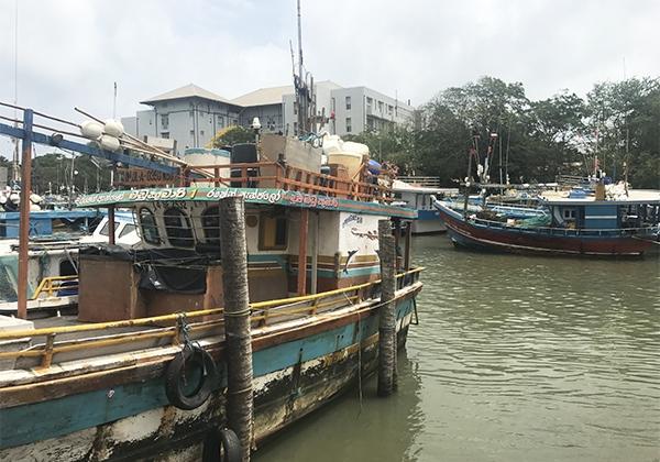 Sri_Lanka_251