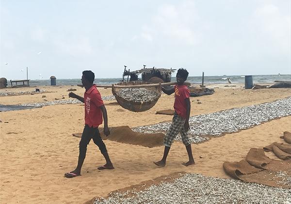 Sri_Lanka_263