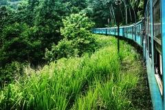 Sri_Lanka_052