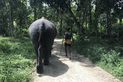 Sri_Lanka_059