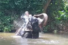 Sri_Lanka_061