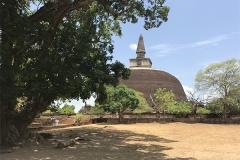 Sri_Lanka_106