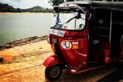 Sri_Lanka_128
