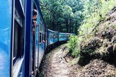 Sri_Lanka_139