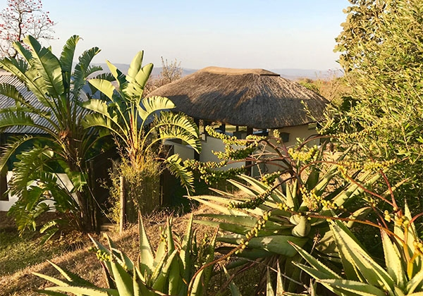 Swaziland-03