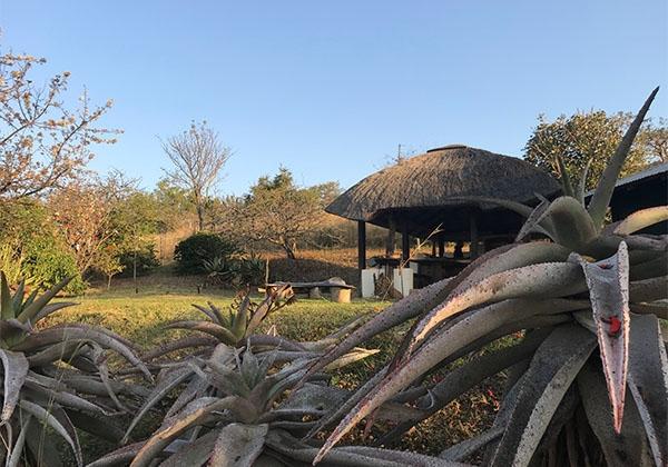 Swaziland-05