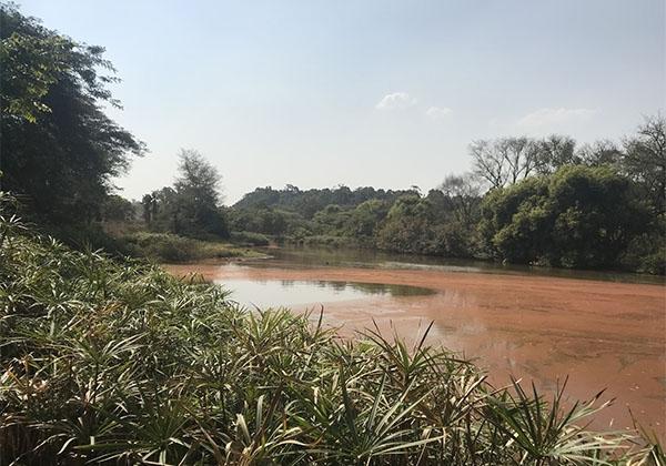 Swaziland-20